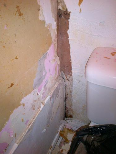 Damp in Treatment Room